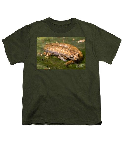 Bolitoglossine Salamander Youth T-Shirt by Dante Fenolio
