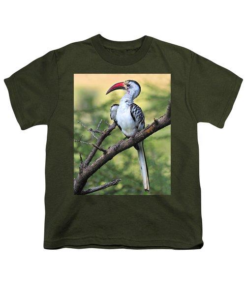 Red-billed Hornbill Youth T-Shirt