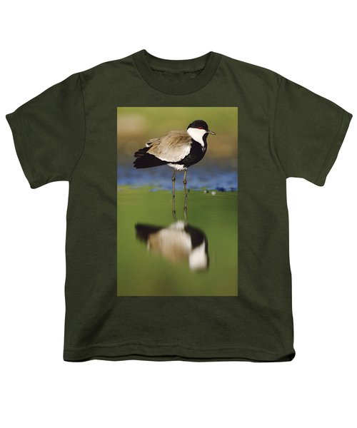 Spur Winged Plover With Its Reflection Youth T-Shirt by Tim Fitzharris