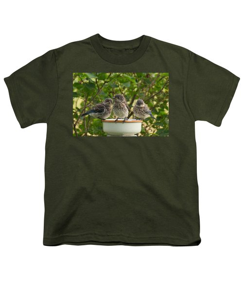 Trouble Times Three Youth T-Shirt by Bill Pevlor