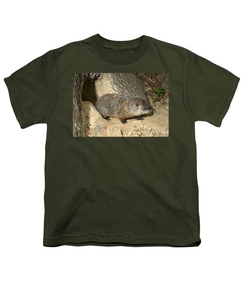 Woodchuck Youth T-Shirt by Ted Kinsman