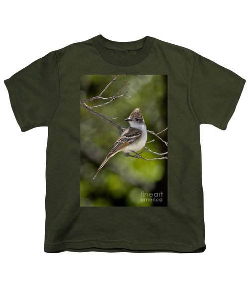 Ash-throated Flycatcher Youth T-Shirt
