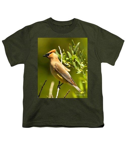 Cedar Waxwing Closeup Youth T-Shirt