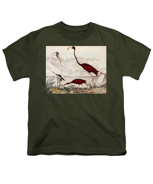 Wood Ibis, Scarlet Flamingo, White Ibis Youth T-Shirt by Alexander Wilson