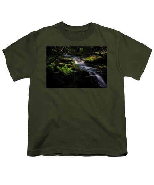 Lynn Mill Waterfalls Youth T-Shirt