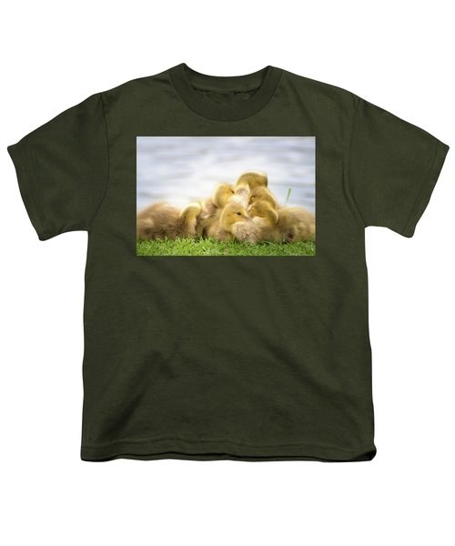 A Pile Of Goslings Youth T-Shirt