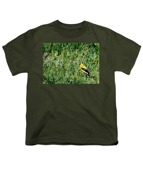American Goldfinch  Youth T-Shirt