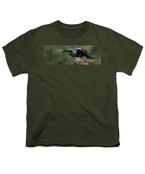 Anhinga Anhinga Anhinga, Costa Rica Youth T-Shirt by Panoramic Images