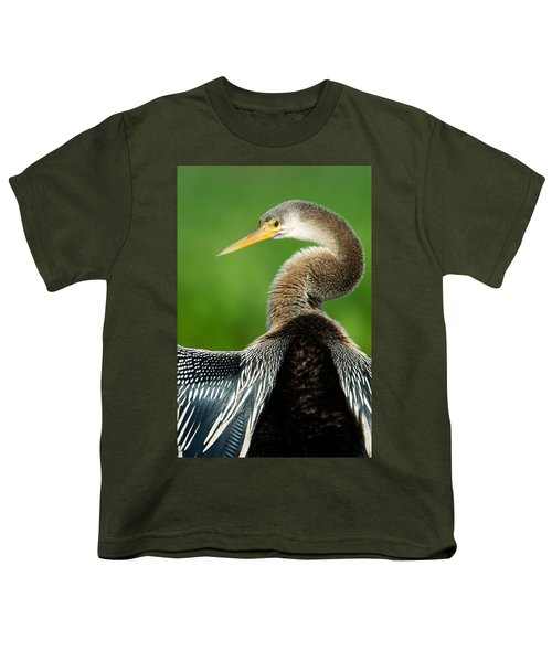 Anhinga Anhinga Anhinga, Pantanal Youth T-Shirt by Panoramic Images