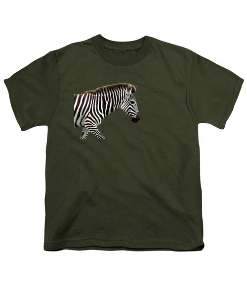 Zebra Youth T-Shirt by Aidan Moran