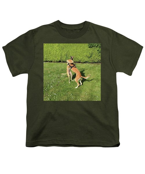 Ava The Saluki And Finly The Lurcher Youth T-Shirt by John Edwards