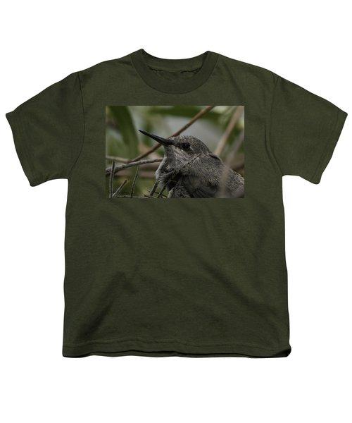 Baby Humming Bird Youth T-Shirt by Lynn Geoffroy