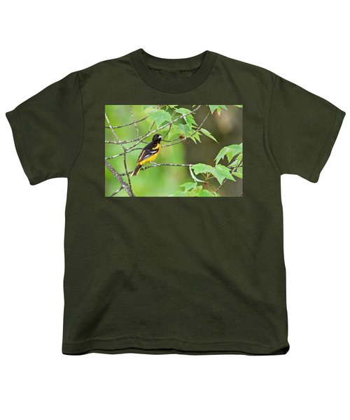 Baltimore Oriole Youth T-Shirt by Michael Peychich