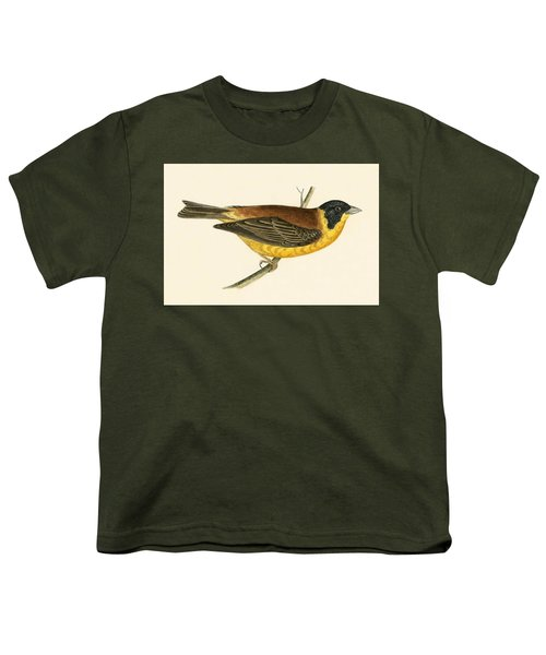 Black Headed Bunting Youth T-Shirt by English School