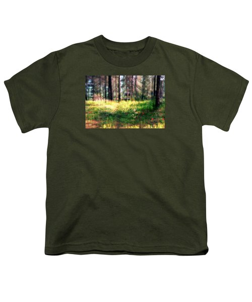 Cabin In The Woods In Menashe Forest Youth T-Shirt by Dubi Roman