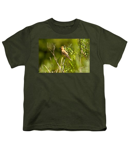 Cedar Waxwing At Glacier Youth T-Shirt