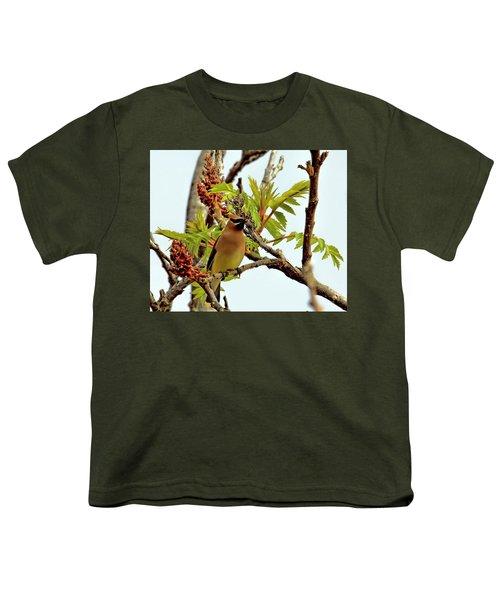 Cedar Waxwing Having A Snack  Youth T-Shirt