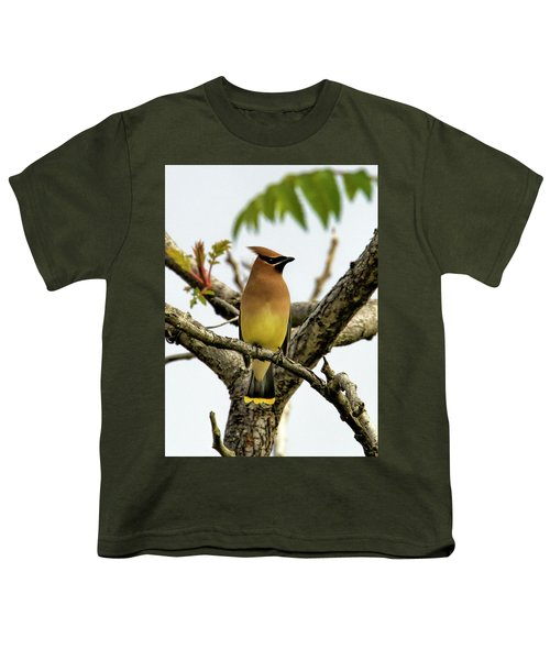 Cedar Waxwing - Spring Visitor Youth T-Shirt