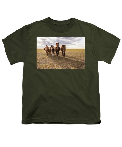 Youth T-Shirt featuring the photograph Curious Horses by Hitendra SINKAR