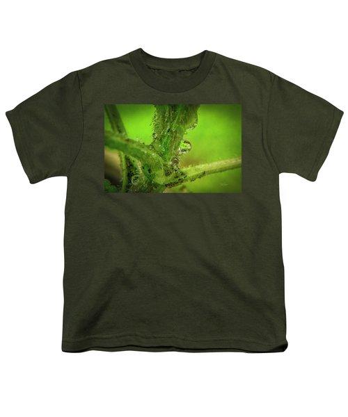 Dew Drop Closeup Youth T-Shirt