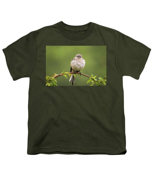 Fluffy Mockingbird Youth T-Shirt by Terry DeLuco