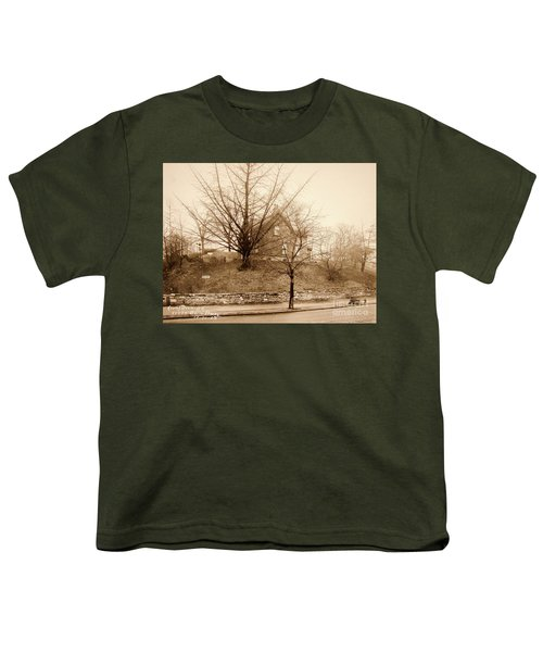 Ginkgo Tree, 1925 Youth T-Shirt by Cole Thompson