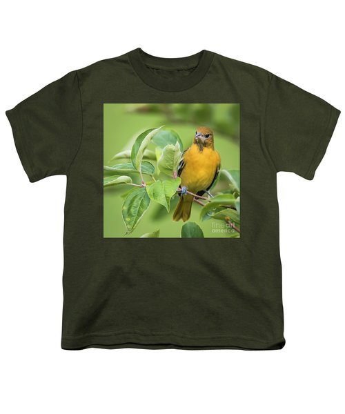 Immature Baltimore Oriole  Youth T-Shirt by Ricky L Jones