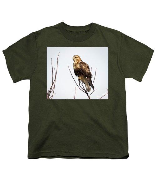 Juvenile Rough-legged Hawk  Youth T-Shirt by Ricky L Jones
