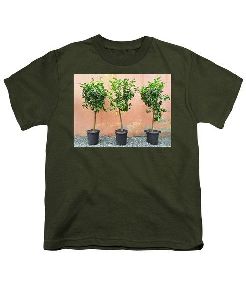Lemon Trees With Ripe Fruits Youth T-Shirt