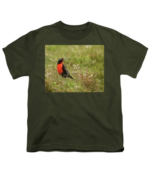Long-tailed Meadowlark Youth T-Shirt by Bruce J Robinson