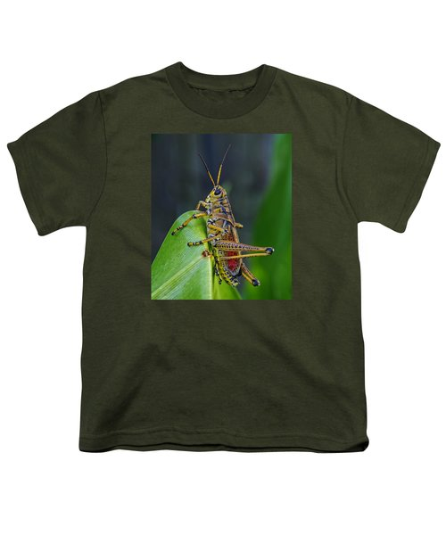 Lubber Grasshopper Youth T-Shirt by Richard Rizzo