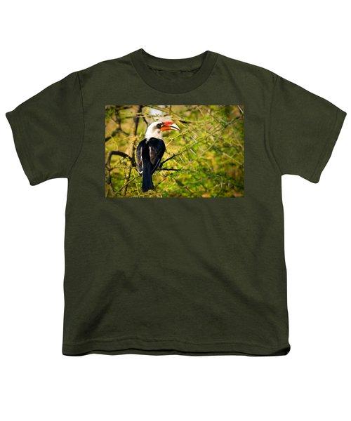 Male Von Der Decken's Hornbill Youth T-Shirt by Adam Romanowicz