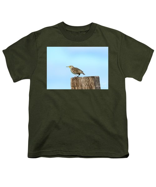 Meadowlark Roost Youth T-Shirt by Mike Dawson