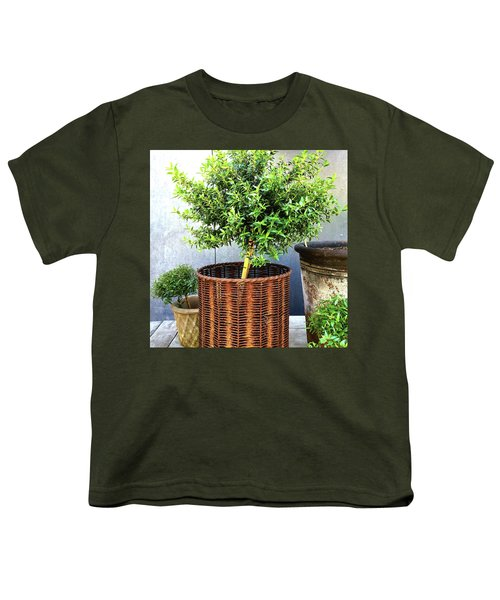 Myrtle Tree In A Rusty Basket Youth T-Shirt