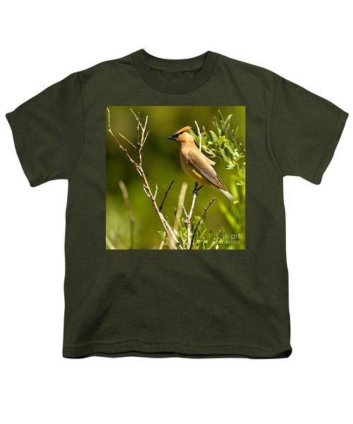 Perfectly Perched Youth T-Shirt by Adam Jewell