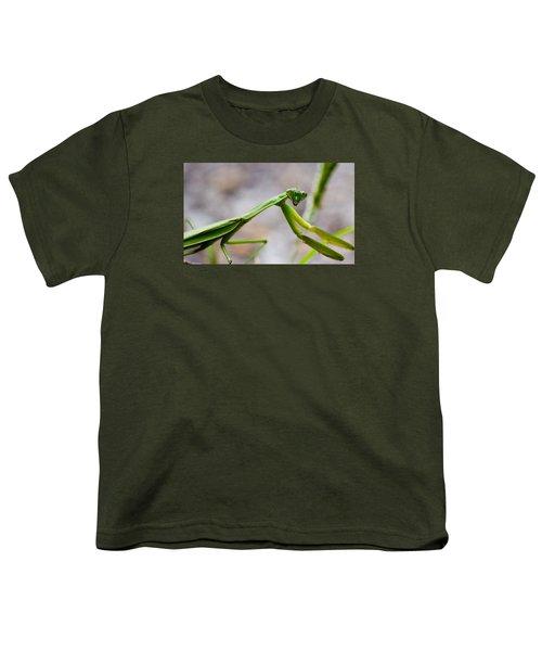 Praying Mantis Looking Youth T-Shirt by Jonny D