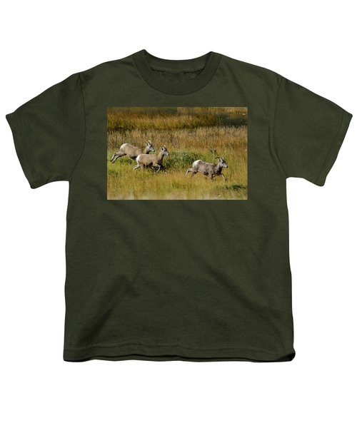Rocky Mountain Goats 7410 Youth T-Shirt