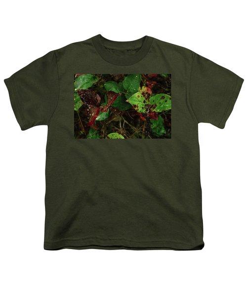 Season Color Youth T-Shirt