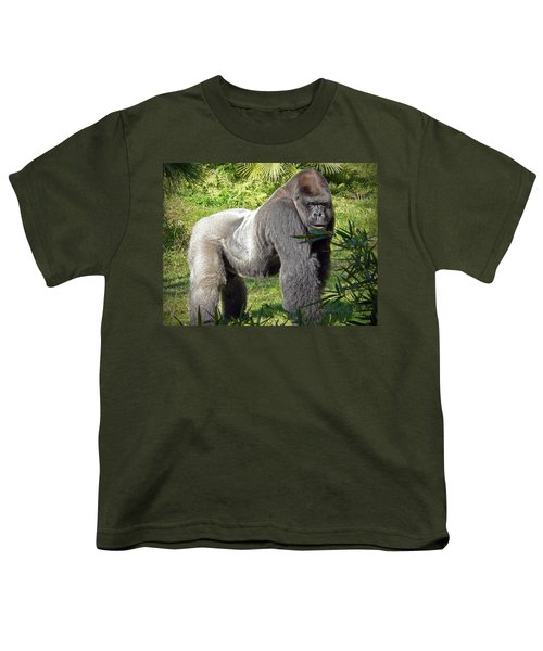 Silverback Youth T-Shirt