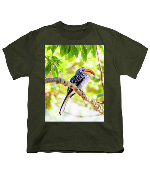Southern Yellow Billed Hornbill Youth T-Shirt by Alexey Stiop