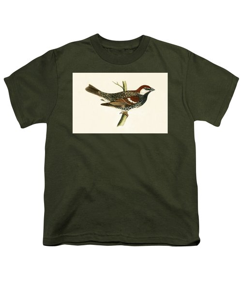 Spanish Sparrow Youth T-Shirt by English School