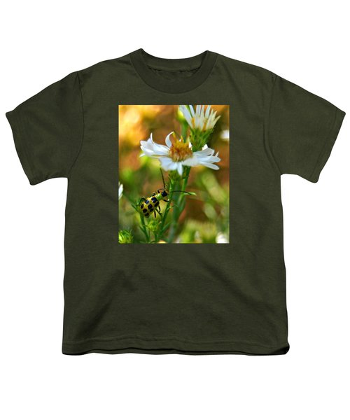 Spotted Cucumber Beetle On Aster Youth T-Shirt