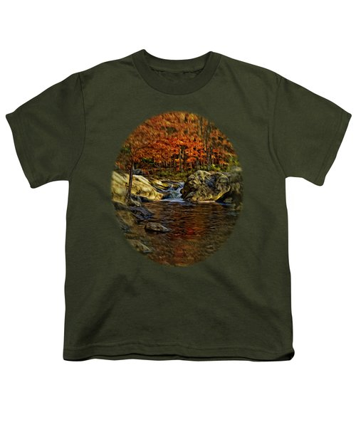 Stream In Autumn 57 In Oil Youth T-Shirt by Mark Myhaver