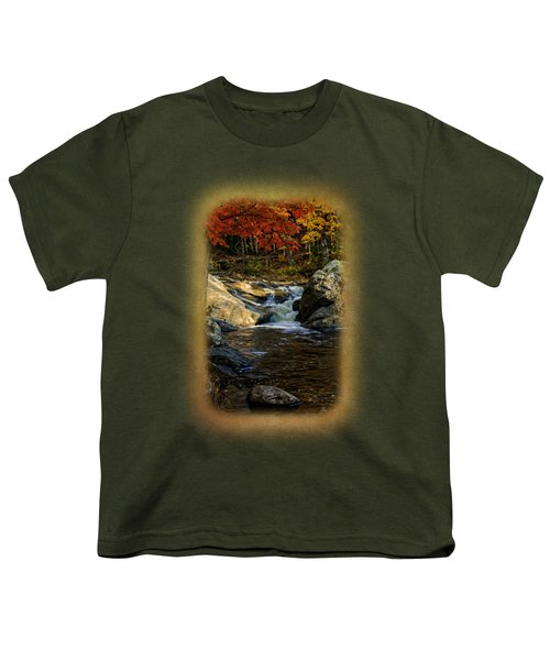 Stream In Autumn No.17 Youth T-Shirt by Mark Myhaver