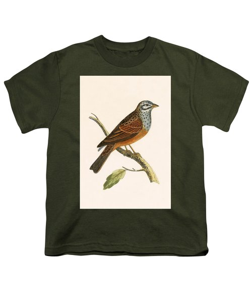 Striolated Bunting Youth T-Shirt