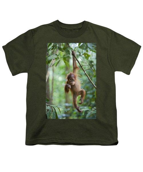 Sumatran Orangutan Pongo Abelii One Youth T-Shirt by Suzi Eszterhas
