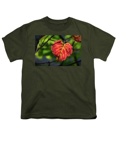 Youth T-Shirt featuring the photograph The Autumn Heart by Bill Pevlor