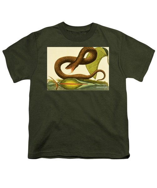 Viper Fusca Youth T-Shirt by Mark Catesby