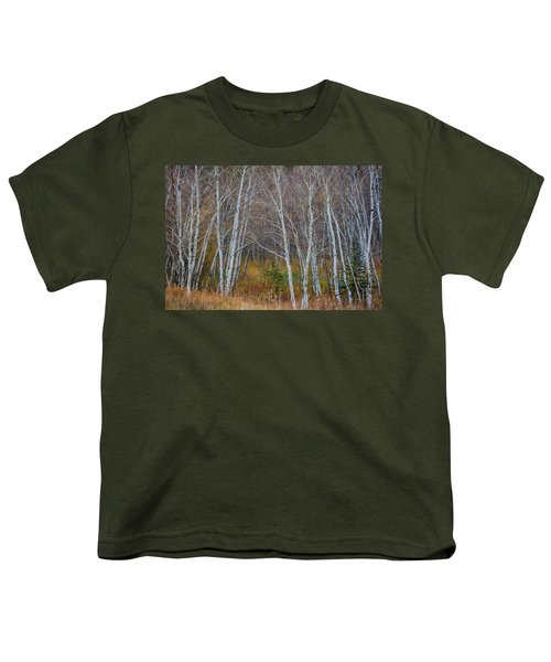 Youth T-Shirt featuring the photograph Walk In The Woods by James BO Insogna