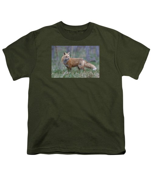 Youth T-Shirt featuring the photograph Watchful by Gary Lengyel